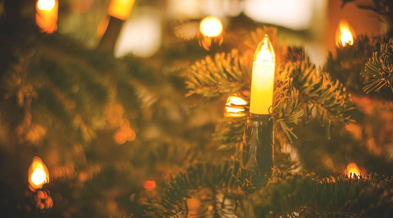 NFPA encourages prompt disposal of Christmas trees and safe removal of lights